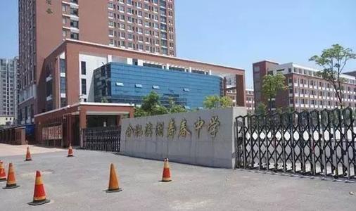 2020安徽合肥滨湖寿春中学教师招聘公告(二)
